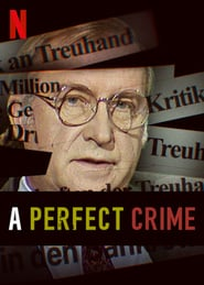 A Perfect Crime Season 1